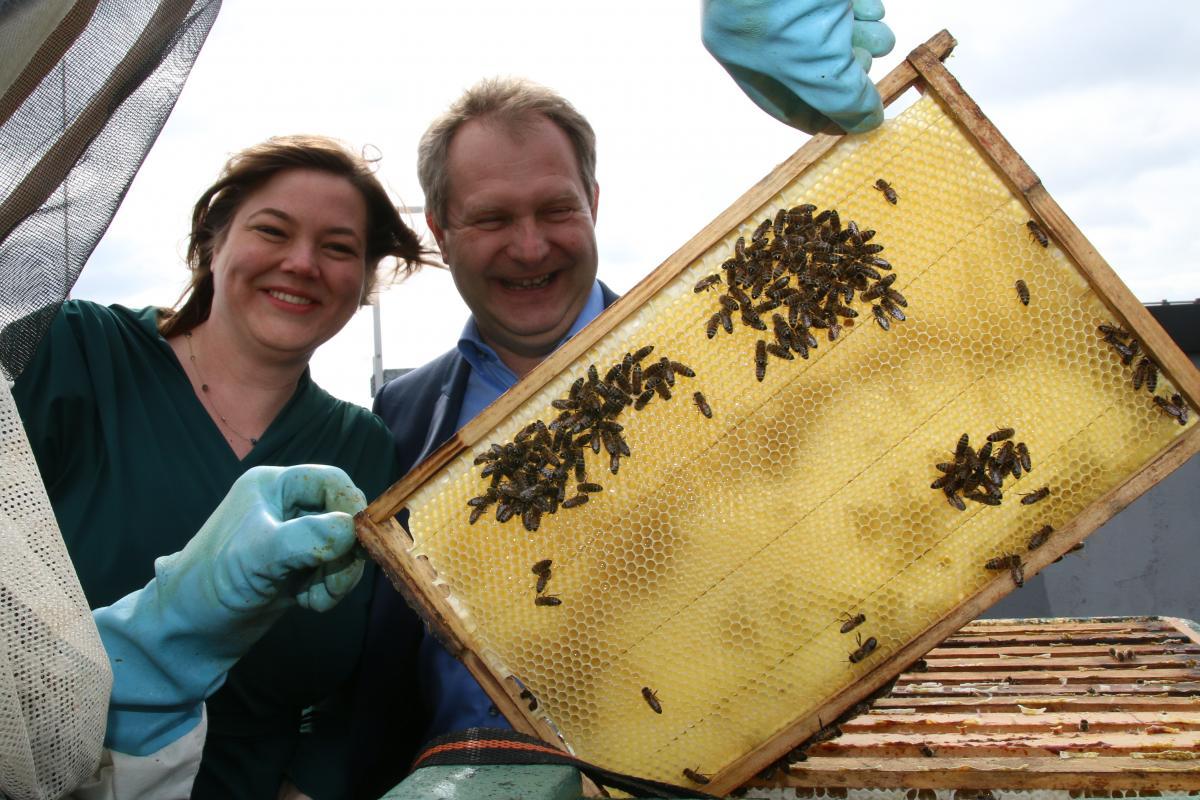 Jens Kerstan und Katharina Fegebank mit den Honigbienen auf dem Dach der Umweltbehörde