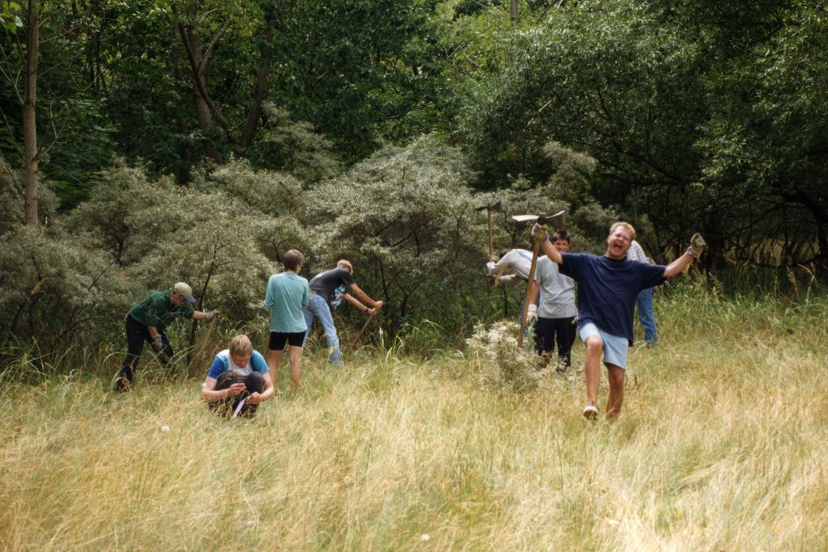 Jens Kerstan beim Entkusseln im Naturschutzgebiet Neßsand